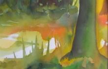 2012-Herfstbos, aquarel, 30 bij 40 cm